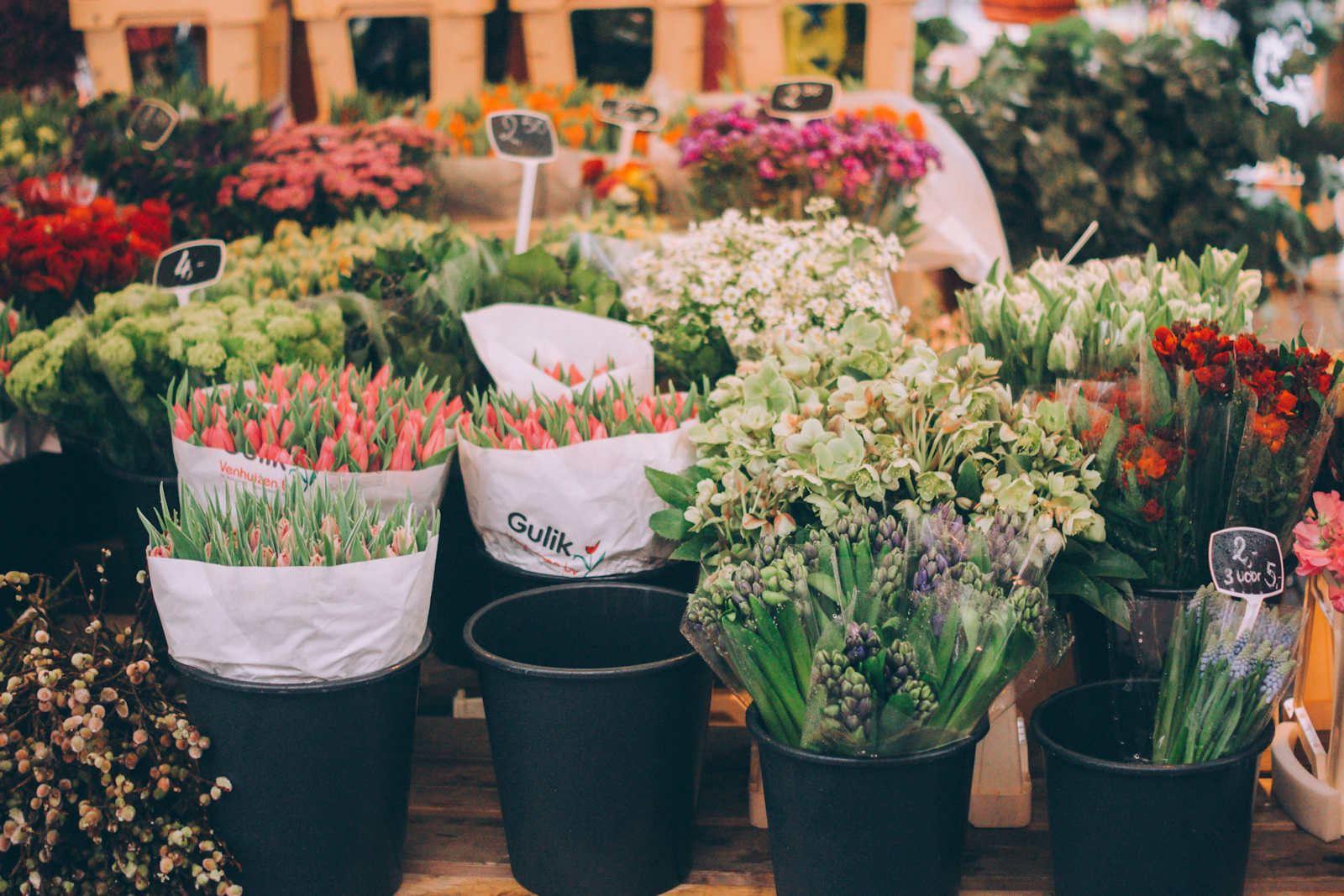 Warwick Grove Florist