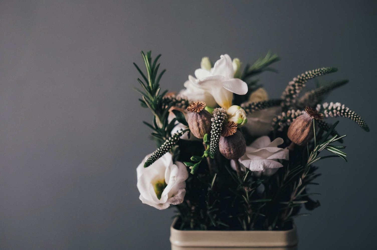 Wild Seasons Flowers of Kalamunda